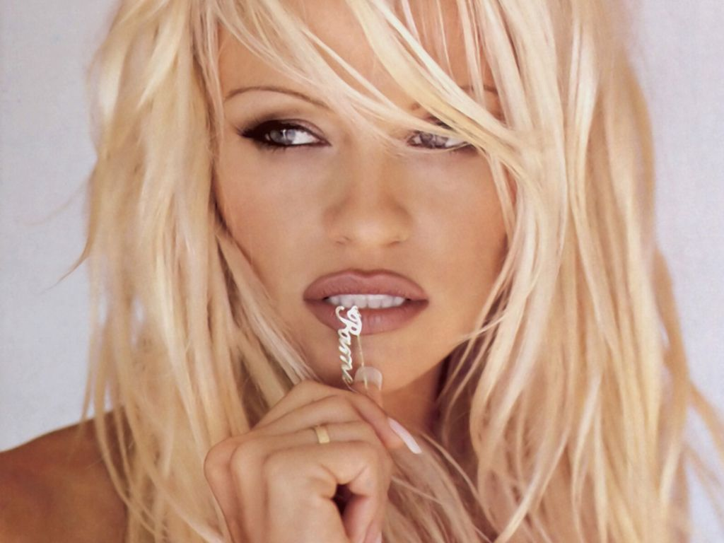 Pamela Anderson Hot Pictures Photo Gallery Wallpapers