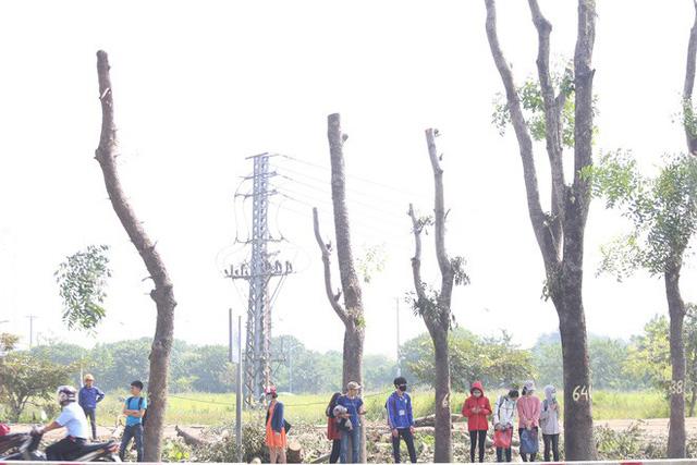 Người dân uể oải chờ xe buýt tại điểm không còn bóng cây.