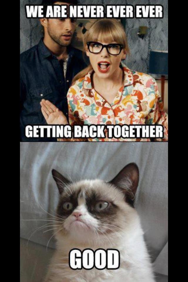 yes cat memes - photo #32