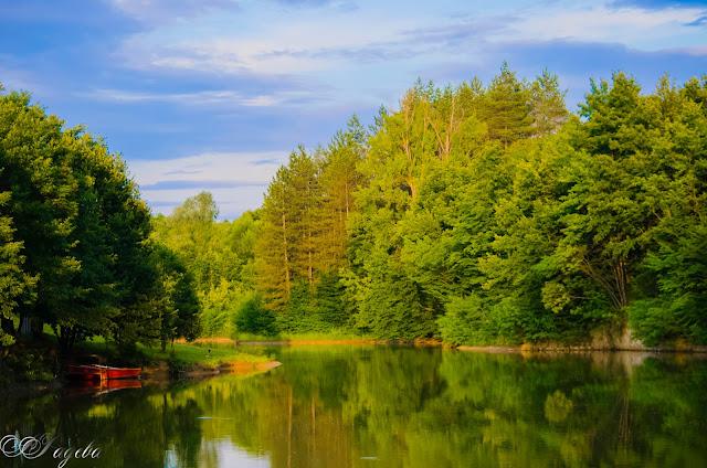 Слънчев-ден-край-язовира-Sunny-day-near-the-dam