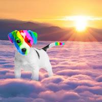 El perro arcoíris sonríe en Cice en las nubes