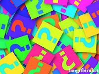 Apa Saja yang Perlu Diketahui agar Mahir Membuat Pertanyaan dalam Bahasa Inggris?
