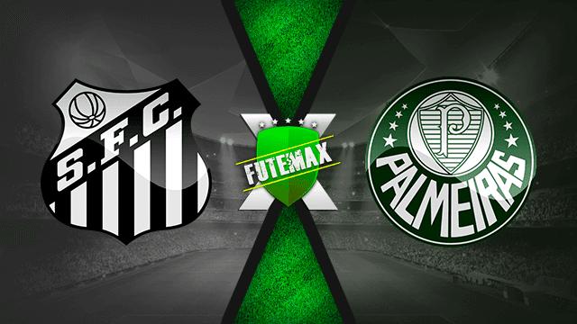 Assistir Santos x Palmeiras Ao Vivo Online HD