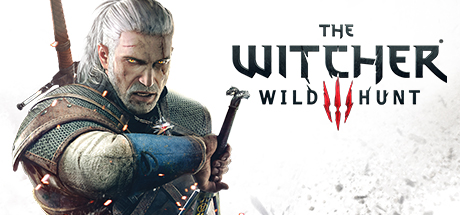 Telecharger Vcomp110.dll The Witcher 3 Gratuit Installer