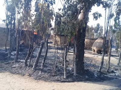 Photos: Scores killed, homes razed by suspected Fulani herdsmen in Numan, Adamawa State
