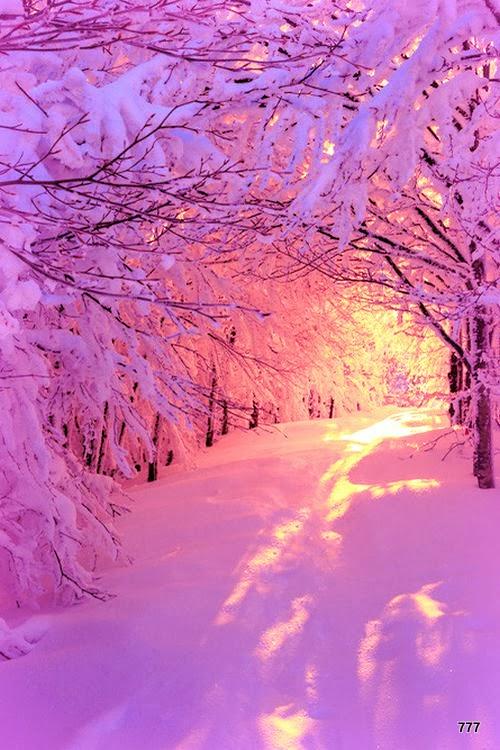 Images pour blogs et facebook l 39 hiver et son blanc Beautiful snowfall pictures