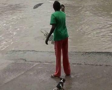 Elle repousse un crocodile avec sa sandale