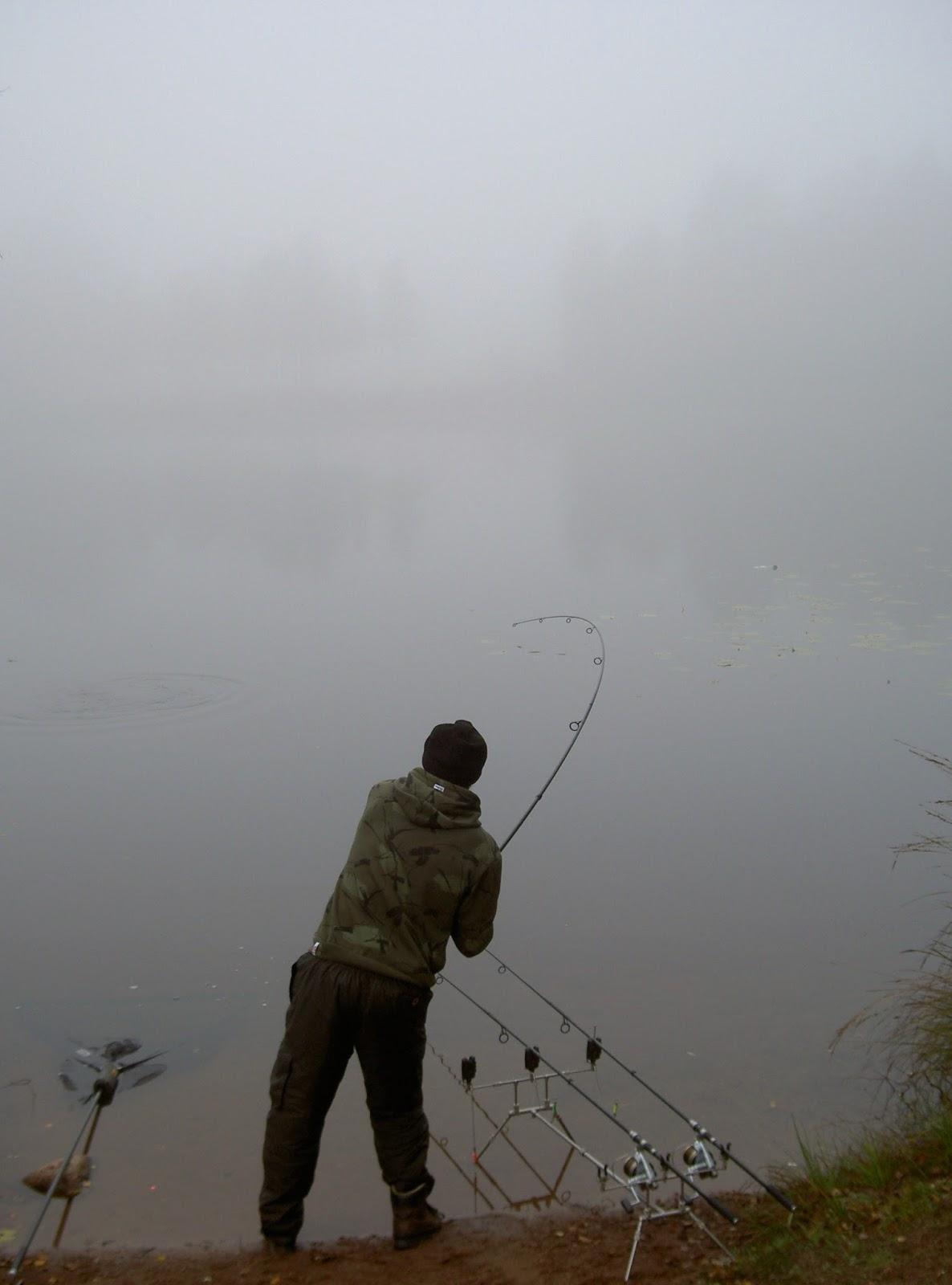 sveriges fiskar