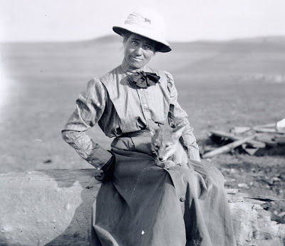 Women Out West: Art on the Edge of America: Evelyn J ...