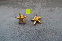 Farbe überarbeitet: UM Schmuck Charm Damen Titanium Edelstahl Seestern Ohrstecker Gold-Ton