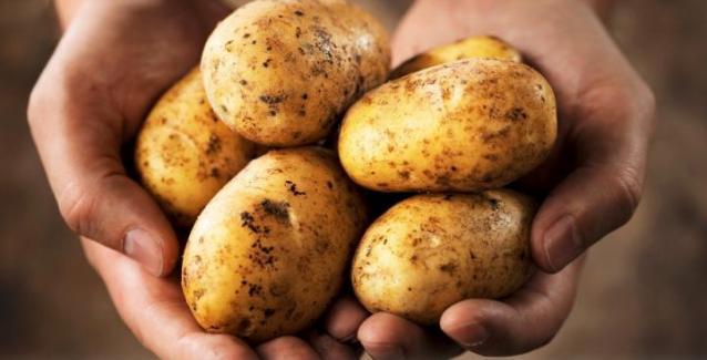 Εξαντλήθηκαν οι πατάτες Νάξου