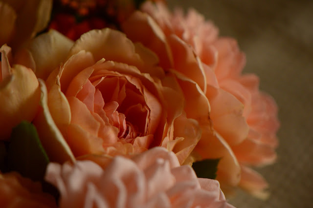 Monday vase meme, rose, Crown Princess Margareta, david austin rose, amy myers photography, amy myers ceramics, small sunny garden, desert garden