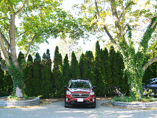 Red Ford Escape parked under two trees at Naramata Heritage Inn