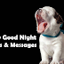 Funny Good Night Quotes, Texts Messages & Sms