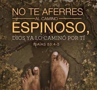 Frases Cristianas de Ánimo