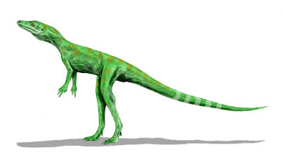Ideas of the age and evolution of dinosaurs have a great deal of evidence in opposition. New evidence of a dinosaur living at the same time as its alleged ancestor is making things worse for evolutionists.