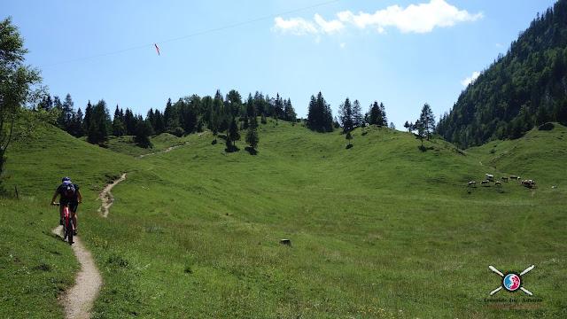 Biken auf flowigen Trails