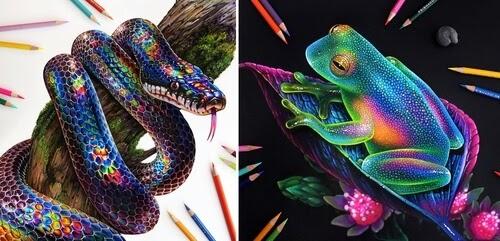 00-Morgan-Davidson-Animal-Drawings-www-designstack-co