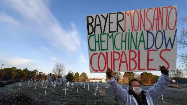 Activistas franceses protestan contra Monsanto