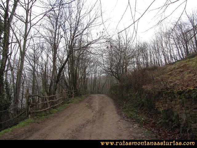 Pico Ranero: Camino de tierra