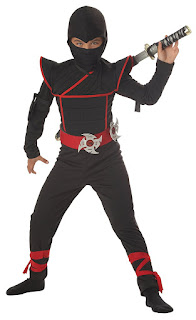 Stealth Ninja Costume - Amazon.ca Halloween Store