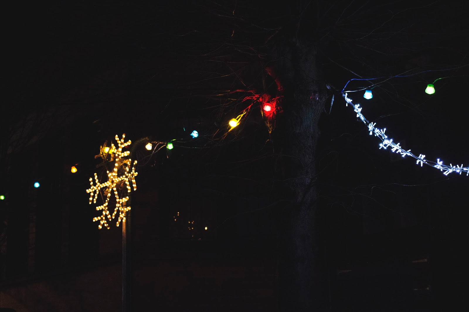 Christmas Lights, Katie Writes