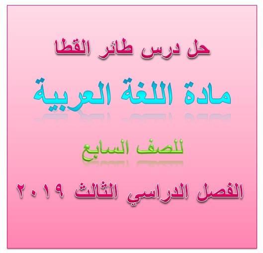 حل درس  طائر القطا لغة عربية للصف السابع الفصل الثانى 2020- مناهج الامارات