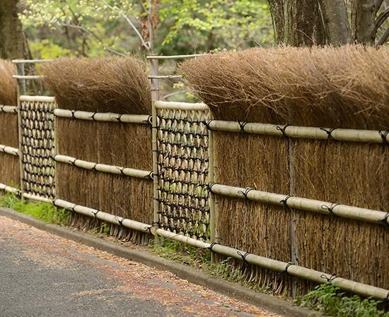 20 inspirasi desain pagar dari bambu