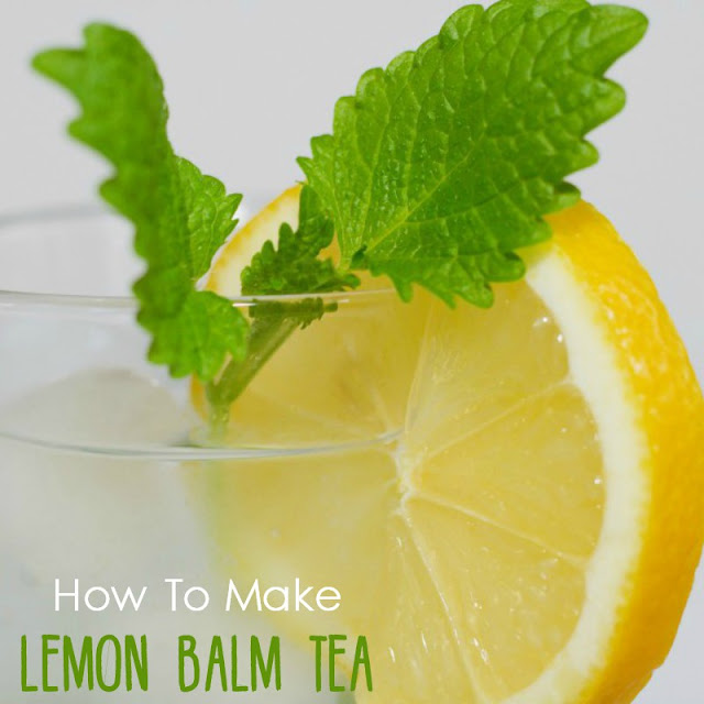 How to make lemon balm tea. Easy-to-make warm lemon balm tea with honey for winter, or ice tea for the summer.