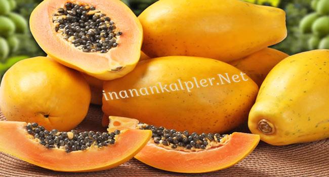 Papaya - www.inanankalpler.net