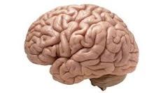 Latihan Relaksasi Dan Pengkondisian Mental yang Mengerikan