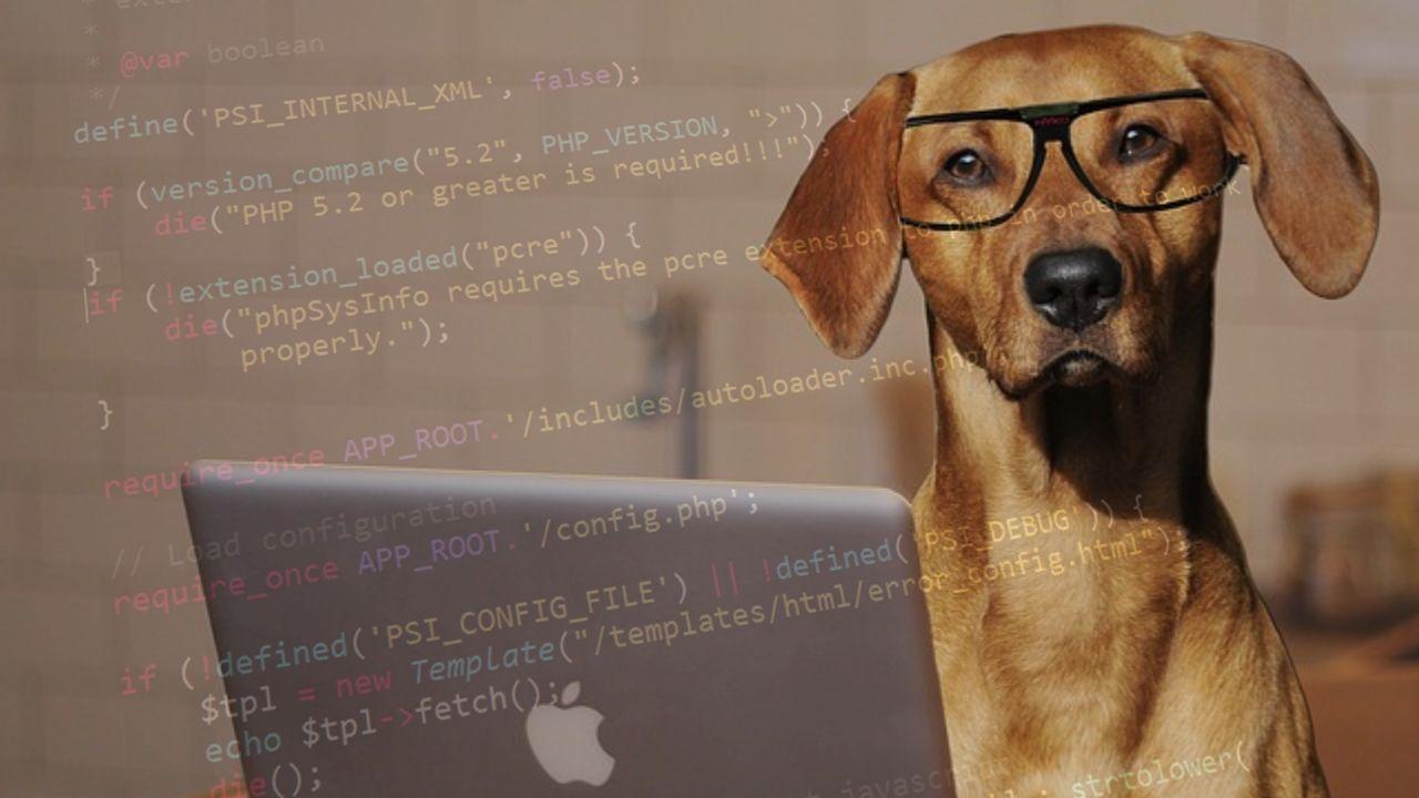 easiest programming languages, easy programming language, top easiest programming language