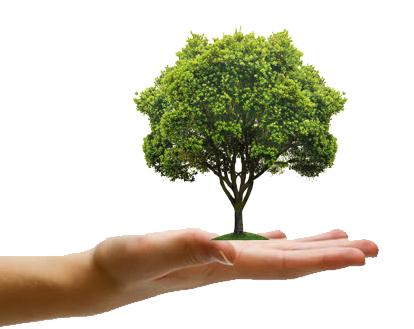"""Essay on Short Words """"Save Trees"""" Article, Paragraph (409 ..."""