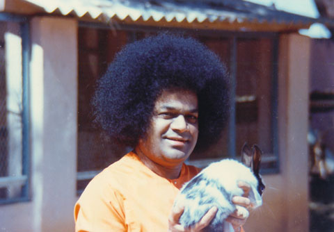 High Definition Photo And Wallpapers: sai baba pictures
