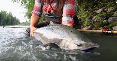 British Columbia Salmon Fly Fishing