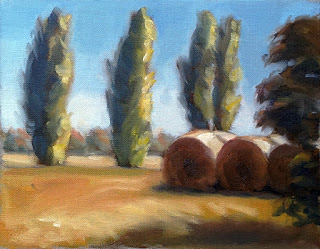 Oil painting of several large round hay bales grouped together with poplar trees behind.