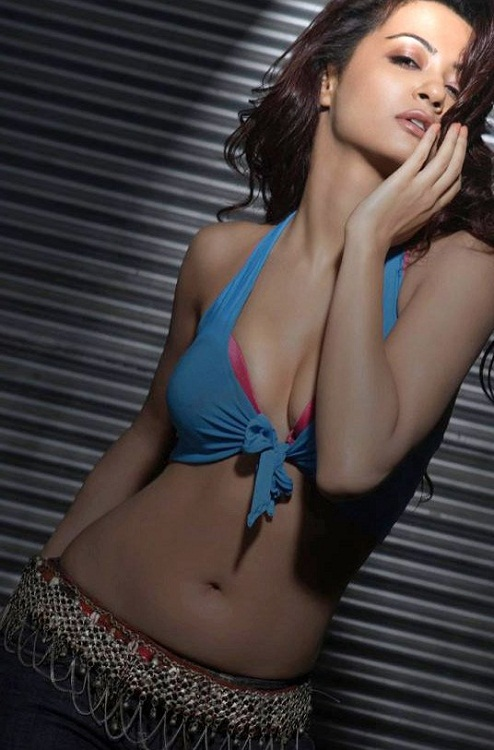 Surveen Chawla Photo Gallery