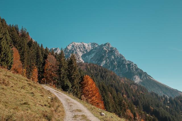 Bergtour Scheffauer  Wandern Wilder Kaiser  leichter Gipfel im Wilden Kaiser  Wandern-Tirol 02