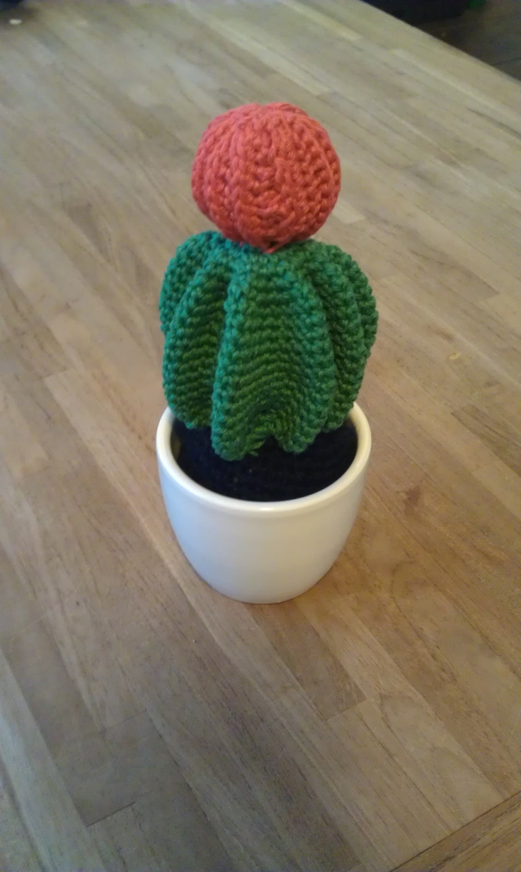 Last Week A Friend Came Over And Asked Me For The Pattern Of One Cactuses I Created Cactus In Question With Red Ball On Top From