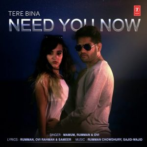 Tere Bina Need You Now (2017)