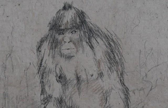 Dashcam records Bigfoot crossing road in Russia