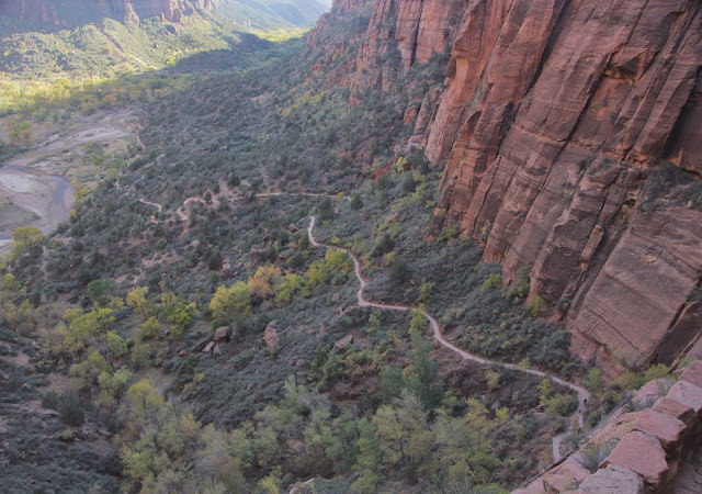 Trail up to Scouts Lookout, Zion National Park