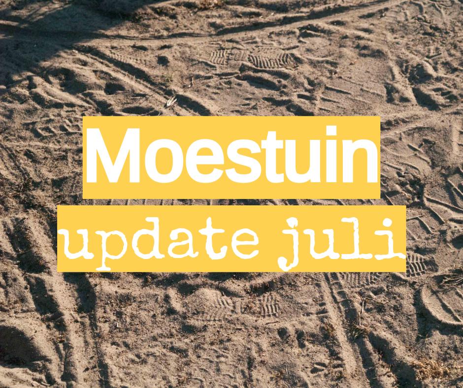 moestuin update juli droog zomer 2018 droogste jaar ooit