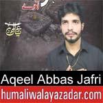 https://www.humaliwalyazadar.com/2018/09/aqeel-abbas-jafri-nohay-2019.html