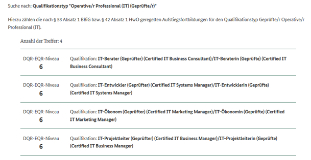 IT Business Manager (IHK) DQR Qualifikationstyp 6