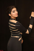 Pranitha Subhash in a skin tight backless brown gown at 64th Jio Filmfare Awards South ~  Exclusive 129.JPG