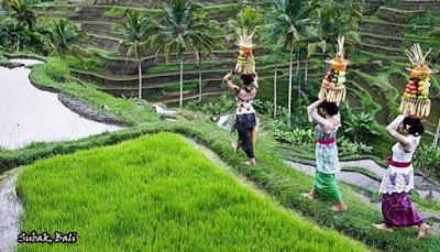 merupakan  primadona pariwisata di Indonesia yang sudah terkenal keseluruh dunia MENIKMATI PESONA WISATA PULAU BALI
