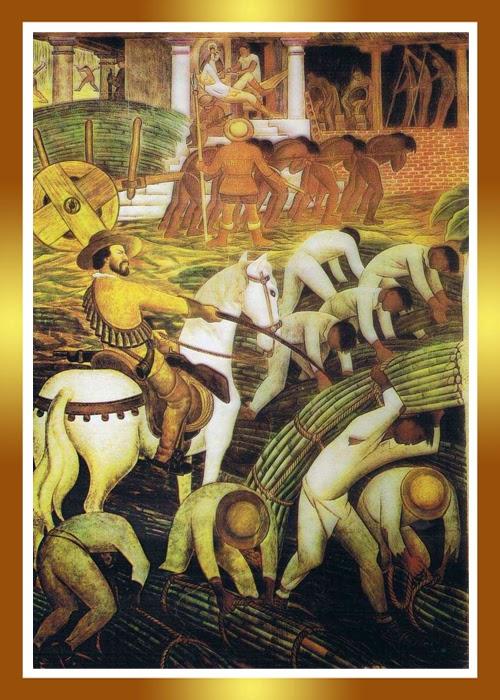 Guía del Plantabosques: CACAO Y AZÚCAR