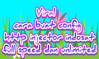 Config http injector
