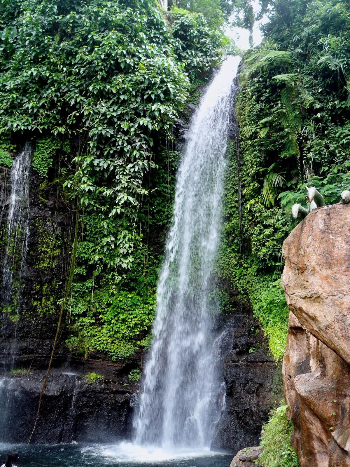 Curug Nangka dan Curug Luhur, Pesona Alami dari Bogor